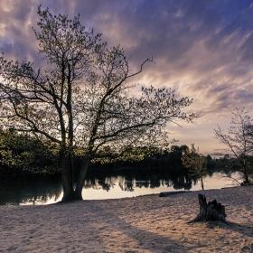 Pout Pond Sunset