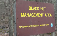 black-hut-management-area