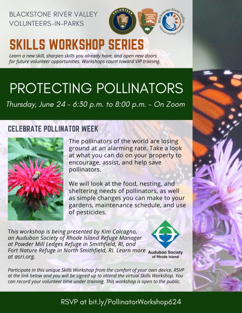 Skills Workshop_Pollinators